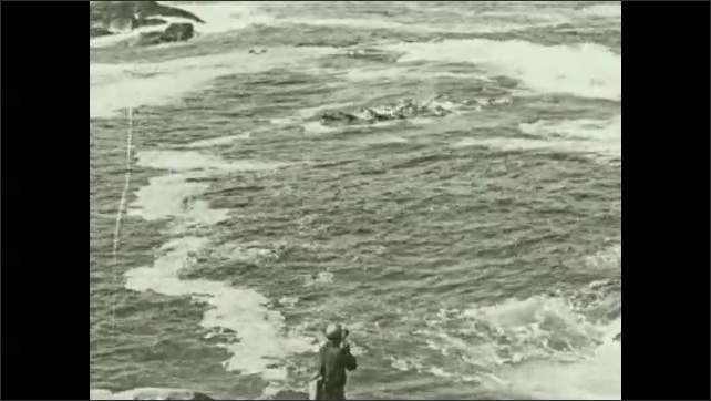 1930s: Intertitle card. Man sits on rocks, looks at sea lions. Man shoots at sea lions.
