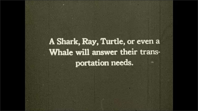 1930s: UNITED STATES: shark swims. Turtle and sharks