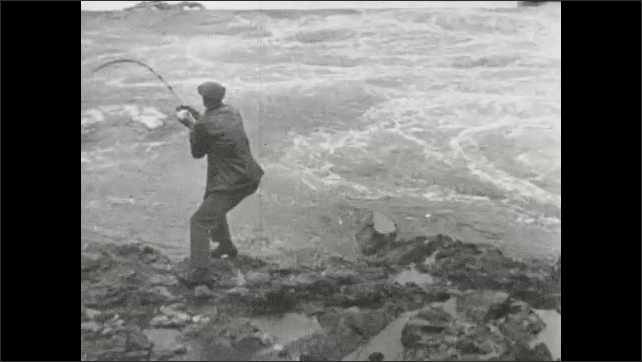 1930s: Man fishes from shore of rapid flowing river. Man reels in line on fishing pole. Man pulls large fish out of rapid flowing river on fishing pole.