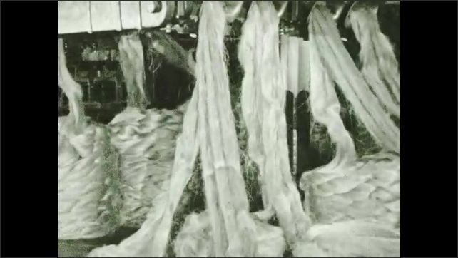 1930s: Machinery piles fibers into coils. Man weighs and measuring piles. Long bundles of fibers are pulled into machine.