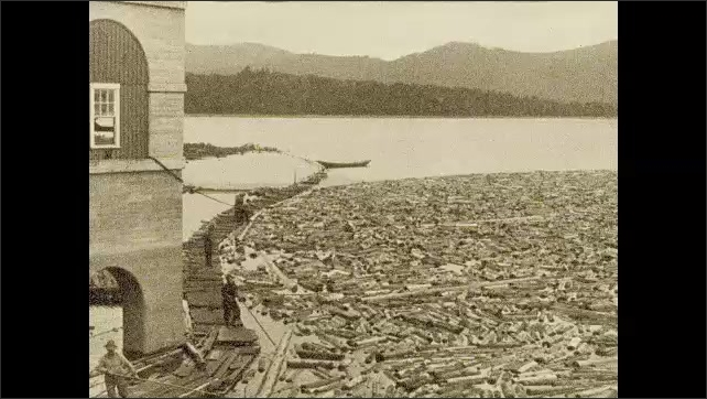 1920s: UNITED STATES: making wood pulp. Logs float in water. Logs in river. Log pile at pulp mill.