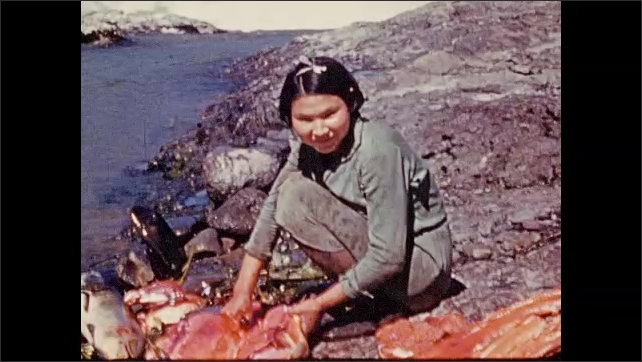 1940s: Woman kneels on rocks by river, cuts open fish. Woman carries fish into building. Fish filets hangs from ceiling of building.