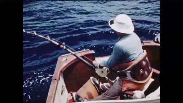 1950s: Water, tuna fishing boat bobs, rocks on waves, man sits, wears fishing rod harness belt, rod bends, sways, man leans forward, pulls line, reels in line. Men lean over, wrestle fish.
