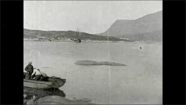 1930s: GREENLAND: settlement in Godhavn. Fishermen prepare boats on shore. View across bay. Boats in bay