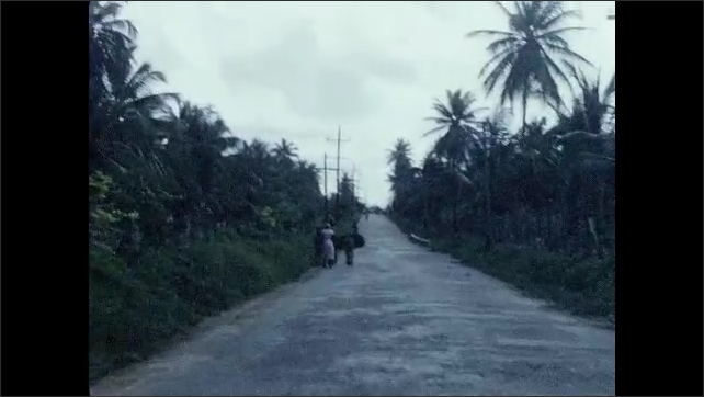 1950s: CARIBBEAN: view along road. People walk along road. Lady and donkey by road. Palm trees by road.