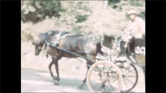 1950s: Man drives horse and people seated in carriage.  Woman waves.