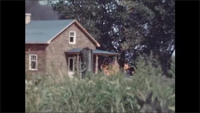 1950s: Woman walks on pathway surrounded by shrubs. View of house with blaze in field behind it. Structure burning down.