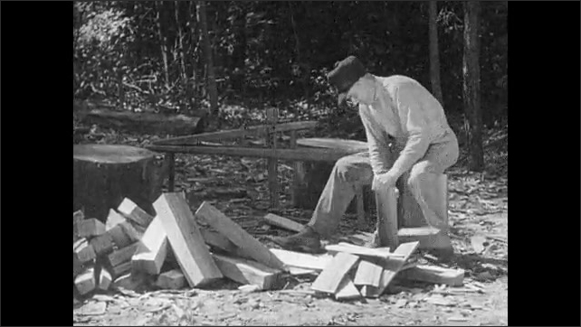 1930s: UNITED STATES: Pacific coast settlements. Men trap fox and martin. Man clears land. Man chops wood. Woman spins wool on machine. Boy traps musk rat.