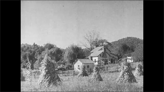 1930s: UNITED STATES: farmstead in countryside. Man carries plants in garden