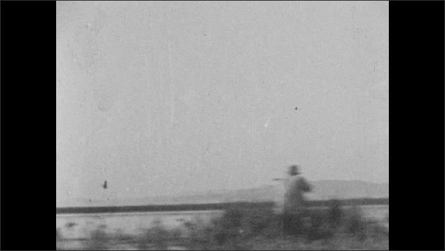 1930s: UNITED STATES: ducks fly in sky. Men shoot ducks. Duck falls from sky