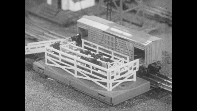 1950s: Milk jugs are unloaded automatically on to platform from milk car. Cows move on to model cattle car from a conveyor and exit again. Model baggage car loads at station.