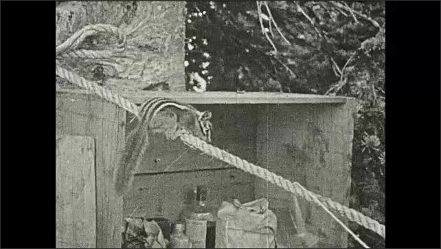 1930s: Chipmunk on rope, tries to get nut hanging below it, tied to string.