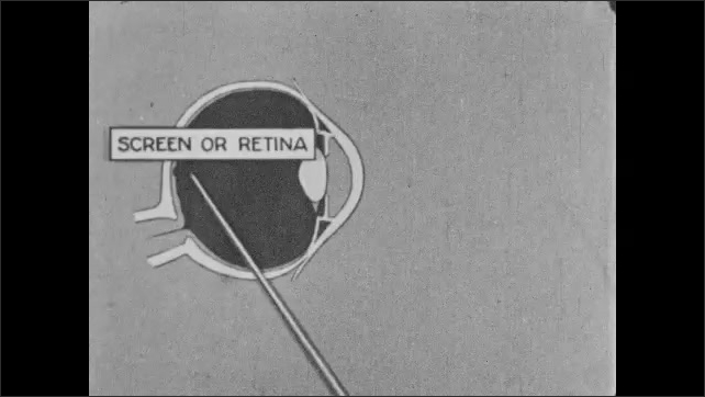 "1920s: Text describes optic nerve.  Animation.  Lines points at diagram of eye.  Parts are labeled ""LENS,"" ""SCREEN OR RETINA,"" and ""DARK BOX."""
