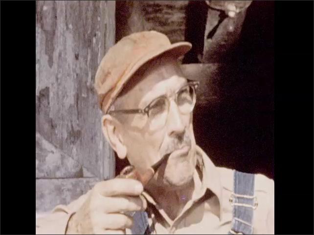 1950s: Farmer drives thresher through cornfield. Farmer smokes pipe. Woman and child feed chickens.