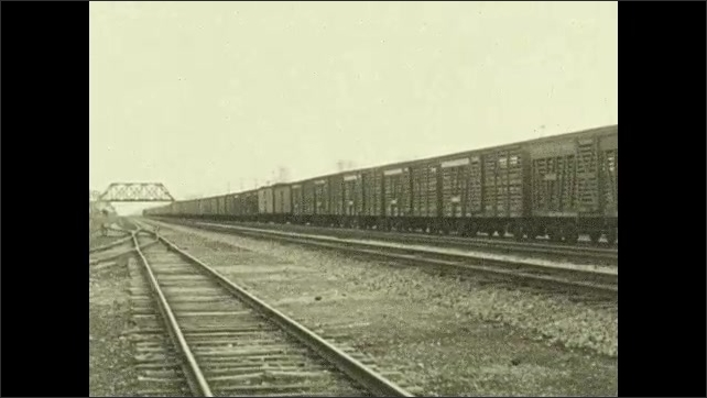 "1930s: ????hicago????is marked on USA map, arrows flow from center to ""Chicago"". A train with cattle wagons passes by. Cows behind a fence."