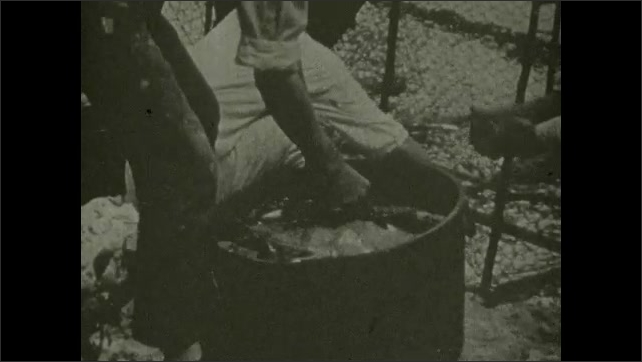 1930s: Man digs through pot of dead fish and pulls a flounder out and holds it, then puts it back in pot.