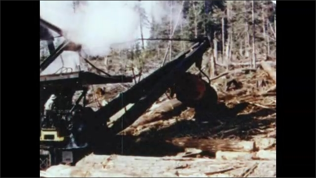 1950s: Man operates steam crane. Crane grabs log. Man in hard hat waves. Crane operator cranks controls. Crane lifts log from pile and places it on ground.