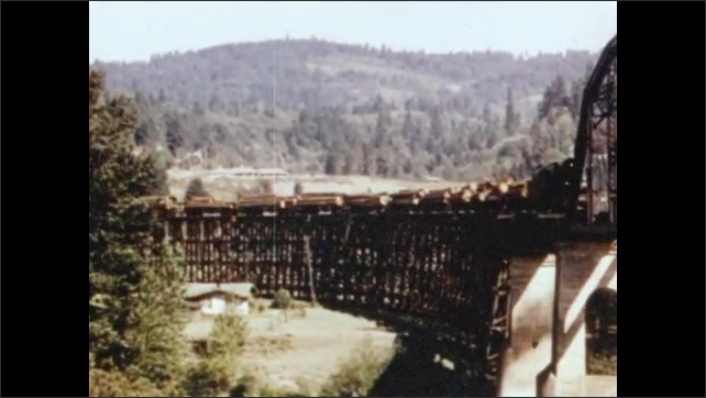 1950s: Train pulls cars of freshly sawn logs through forest. Train pulls logs over trestle bridge. Train travels across bridge in forest mountains.