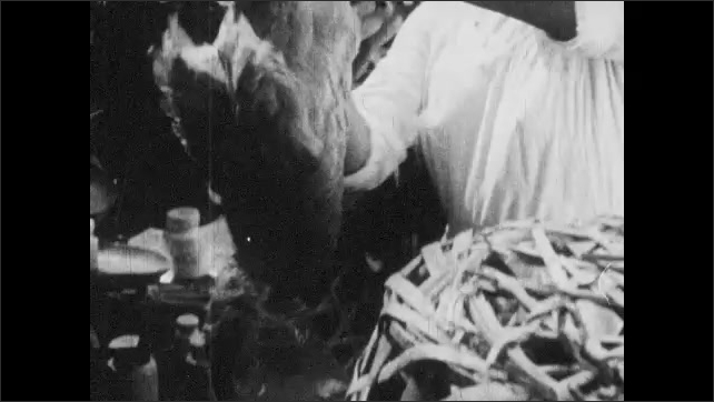 VIETNAM 1960s: Fish being sold at Vietnamese market. People shopping at market. Fowl being sold. Scale being weighed.
