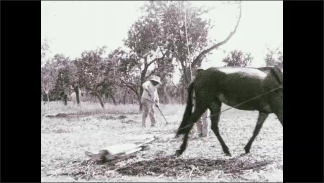 """1930s: Woman holds jug.  Text reads """"The everlasting round of labor.""""  Horse plows field.  Men work."""