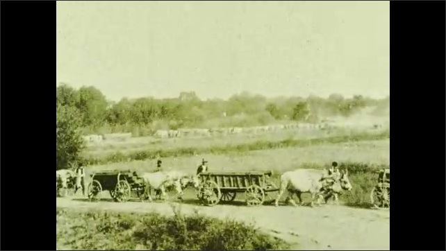 1930s: Oxen pull farming machinery across field with men guiding it. Young man looks around corner of home. Oxen pull carts down road while men walk along side. Title card.