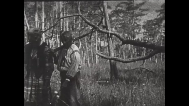 1930s: Seminole Indians carry rifles and walk through palm forest wetlands. Men point and talk.