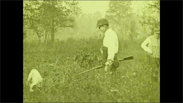 1930s: Dogs walk around a man who carries a rifle in a field with high grass, another man who carries a rifle arrives, they look around. Intertitle. A dog stands still in the grass.