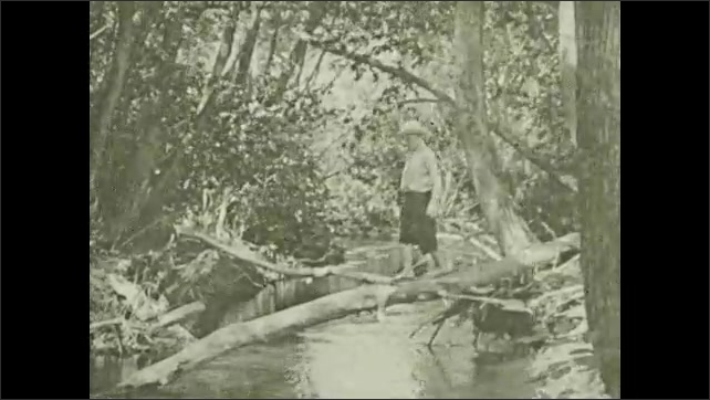 1930s: UNITED STATES: Prairie Dogs run to burrow. Boy walks across fallen tree with dog. Boy throws object in water for dog.