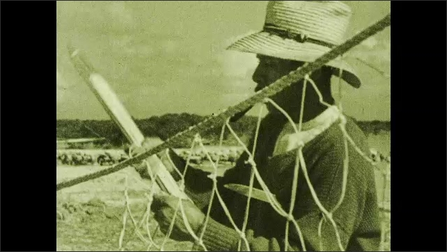 1930s: Workers lift shark out of water in net. Workers build net.