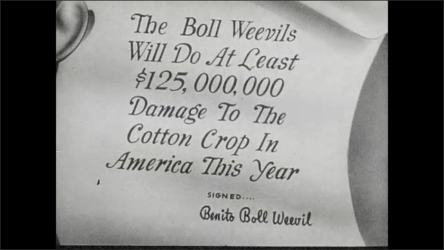 "1940s: Animation of paper with text ""The Boll Weevils Will Do At Least $125,000,000 Damage to The Cotton Crop In America This Year"". Mosquito with Hitler's face rolls up scroll and talks."