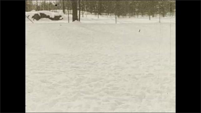 1930s: Three horses run through snow. Three horses stand in snow.