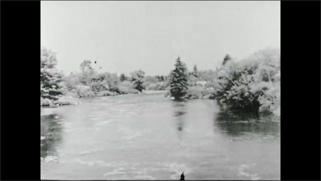 1930s: UNITED STATES: water in brook. Water evaporates on plants. Dew on flower. Fog on landscape.