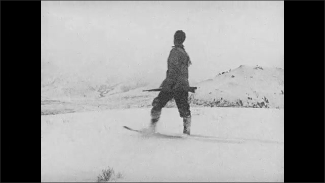 1930s: UNITED STATES: men leave shelter in woods. Men leave log cabin. Men in snow shoes walk through snow. Famished elk driven to extremes title