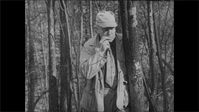 1930s: man uses turkey call as turkeys are flying in sky, another man lines up shot on flying turkey