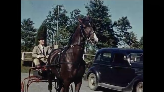 1940s: Man sits on a horse that stands still, cars pass by behind them, the man rides the horse. Man sits on horse carriage that stands next to parked car. Man pulls carriage to the side of the road.
