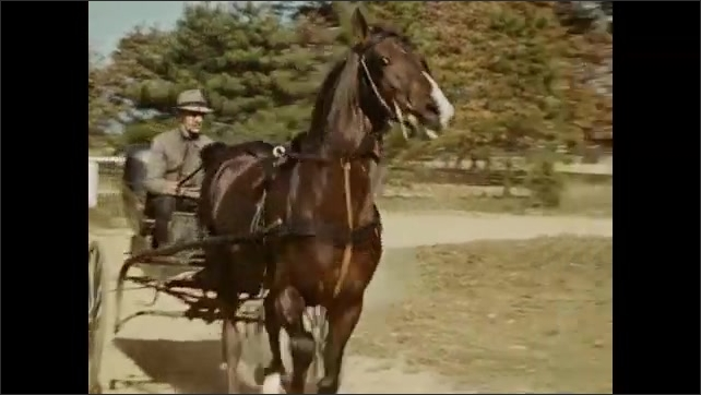 1940s: A man drives a horse-drawn carriage at a fast pace on a dirt road with trees.