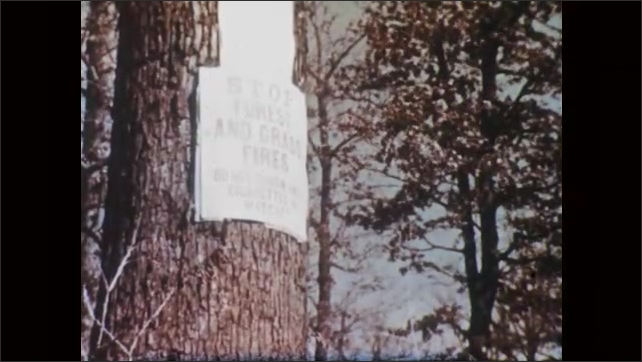 """1950s: Wilted vegetation. Tree branches that have lost most of their leaves. Sign on tree """"STOP FOREST AND GRASS FIRES."""" Girl stands on sidewalk and looks around.D8"""
