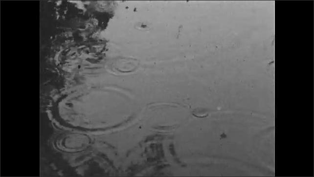 1970s: Dark, cloudy sky. Field of crops. Rain falls on pond. Field of crops in rain. Field of crops growing.
