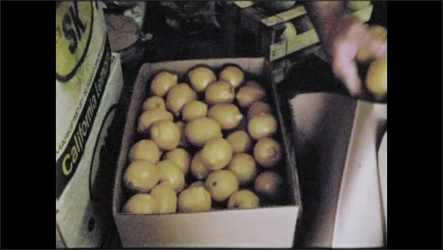 1970s: local grocer owner inspecting produce and loading boxes of produce into car