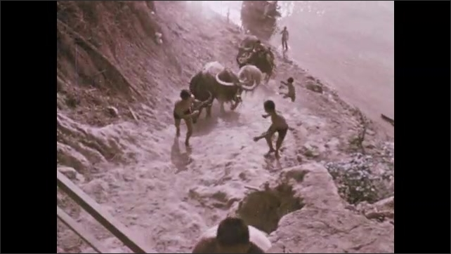 1970s: Women scoop water from tributary to irrigate rice paddy fields. Children lead water buffalo up steep hill from edge of river. Cars and bicycles navigate busy city streets in Vientiane.