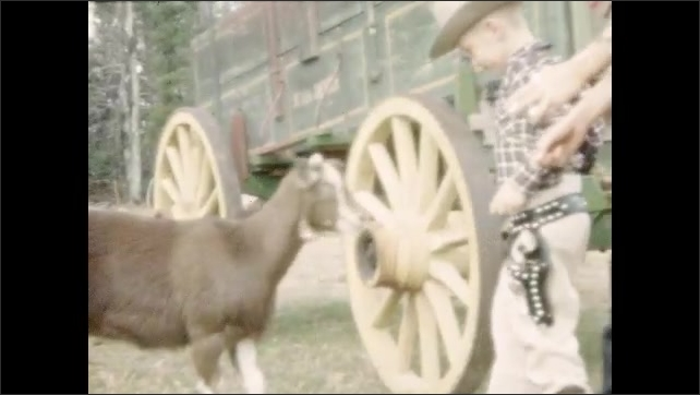 1950s: UNITED STATES: boy strokes goat in field. Boy in cowboy costume. Ladies back away from goat in field