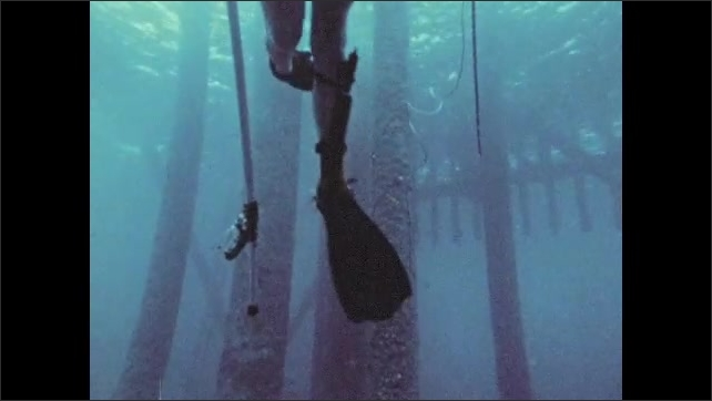 1970s: Scuba diver swims up to surface, holds fish. Man pulls fish into boat.