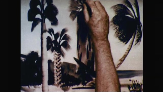 1950s: Painter sketches in top of Washingtonian palm. Painter uses fan brush to create palm foliage.