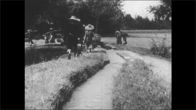 1940s: Water flows through water wheel. Farmers push wheelbarrows through field where irrigation canals flow. Two men sit on scaffolding, turn wheel with feet. Birds rest on flooded field.