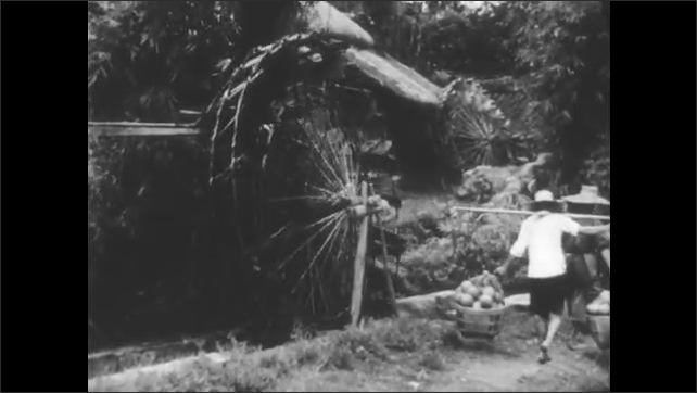 1940s: Plants in a field. Farmers walk over small bridge, small waterfall in field. Farmers walk past water wheel, carry baskets on shoulder poles. Man stands inside power plant, adjusts switches.