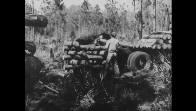 1940s: UNITED STATES: industrial building by river. Men load timber onto truck. Railroad carriages transport timber