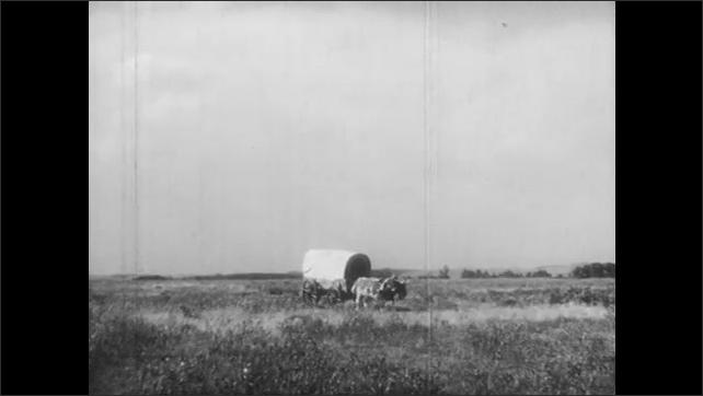 1940s: Covered wagon drawn by bulls rolls across plain.