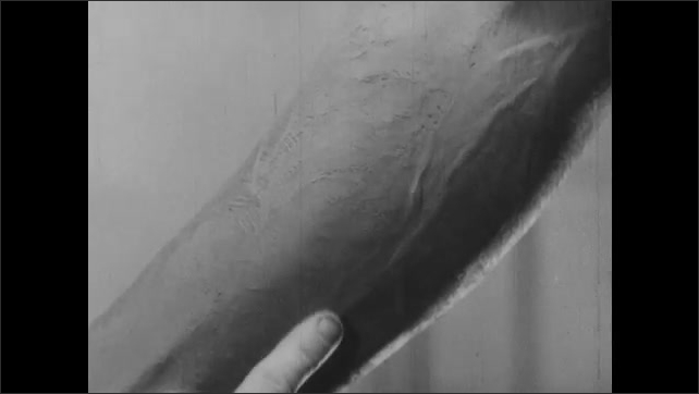 1940s: UNITED STATES: hand creates texture of skin on clay model. Veins on clay model