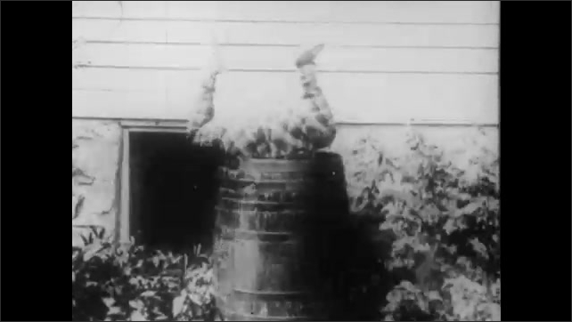 1910s: Two men argue in a pool hall. A woman enters. The crowd points to a man who jumps out the window and lands in a barrel of water. They point to another man, and she chases him with a pool cue.