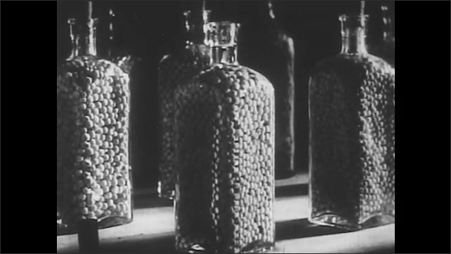 1950s: Hand puts seeds in a jar, pours water into jar and seals the jar. Seeds grow in the jar in time-lapse photography.